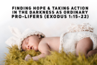 Finding Hope & Taking Action in the Darkness As Ordinary Pro-Lifers - Exodus 1:15-22 (Sanctity of Human Life Sunday)